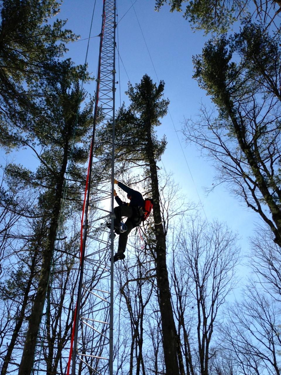 Harvard professor Andrew Richardson scales a tower to adjust webcams that keep an eye on seasonal changes in the trees. See the images at harvardforest.fas.harvard.edu/webcams.