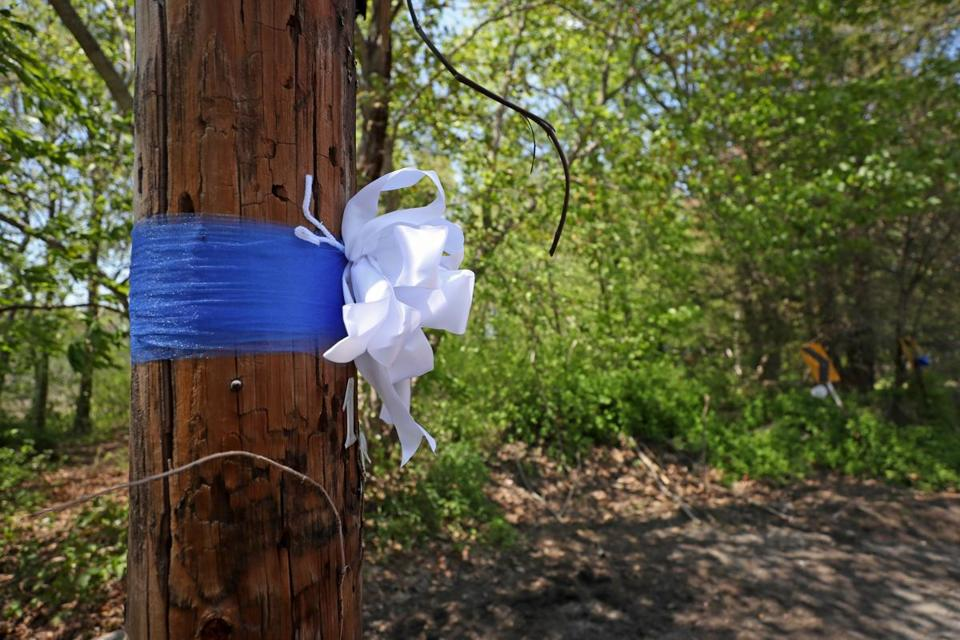 A ribbon tied to a telephone pole near the area where Michael Doherty went missing.