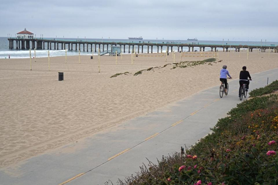 At the Manhattan Beach Pier, the bike path slices between a bed of sea roses and the beach.