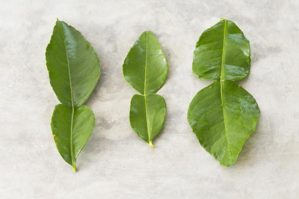 Whole kaffir lime leaves have two lobes. Use both, but remove the tough spine before slicing them.