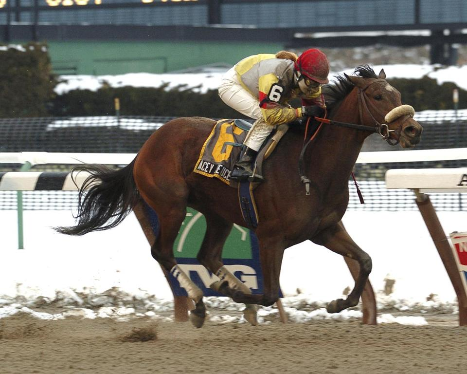 Diane J. Nelson rode Acey Deucey to victory in The Dearly Precious stakes at Aqueduct Race Track in New York in 2005.