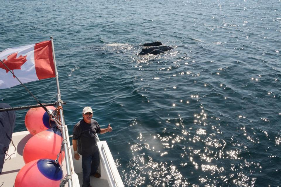 Joe Howlett, a lobsterman, boat captain and an experienced large whale entanglement responder, lost his life.