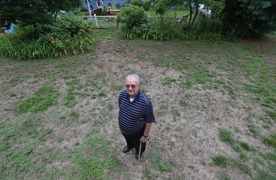 Len Evans of Burlington had the nicest lawn in the neighborhood until they hired Lawn Dawgs to fertilize it and kill weeds.