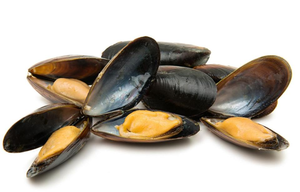 Inspect your mussels before cooking them, and discard or compost any that are open. Likewise, do not consume any mussels that have remained closed after cooking.