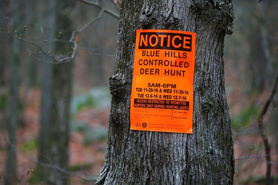 Signs were posted last year to mark the deer hunt at Blue Hills Reservation.
