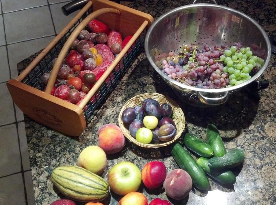 Late summer brings a wide variety of fresh produce.