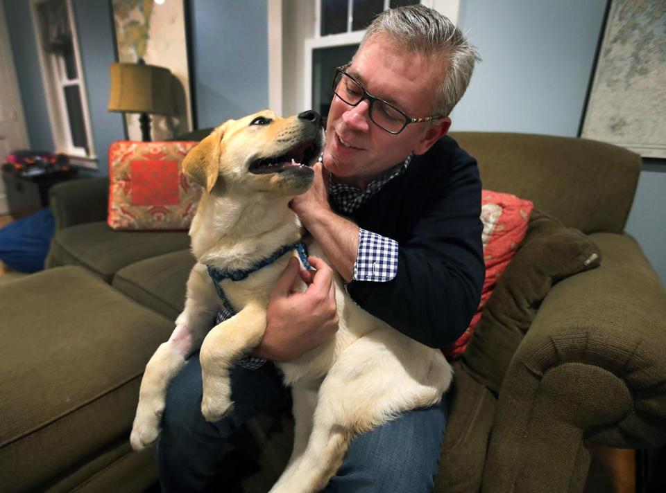 Peter Thibault's puppy, Zoey, was rushed to an animal hospital after she ingested opioids during a walk in Andover.