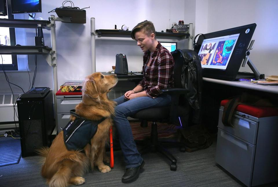 "Boston, MA - 10/30/2017 - TPTW Diabetic-alert service dog ""Sienna"" accompanies artist Anne Szabla (cq) to work at Harmonix (cq). (Pat Greenhouse/Globe Staff) Topic: 111917disabilities Reporter: Katheleen Conti"