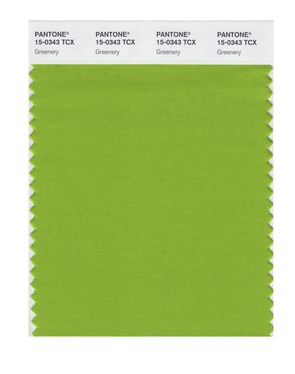 """Greenery"" was named color of the year for 2017."