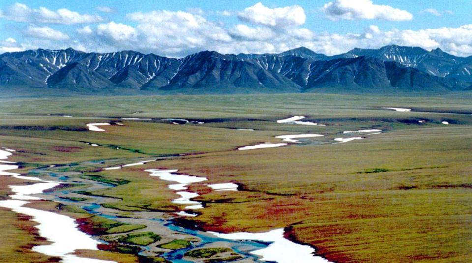 A section of the Arctic National Wildlife Refuge in Alaska targeted for oil and natural gas drilling.
