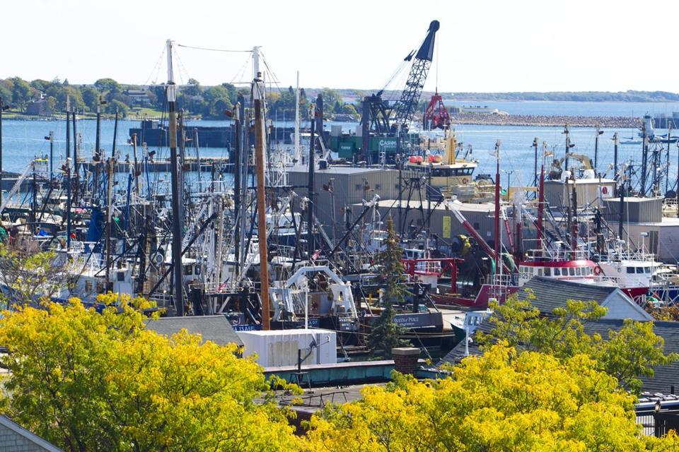 Above: Fishing boats crowded New Bedford Harbor. New Bedford-based fishermen and others on the East Coast are concerned that wind turbines could make life on the water more difficult.