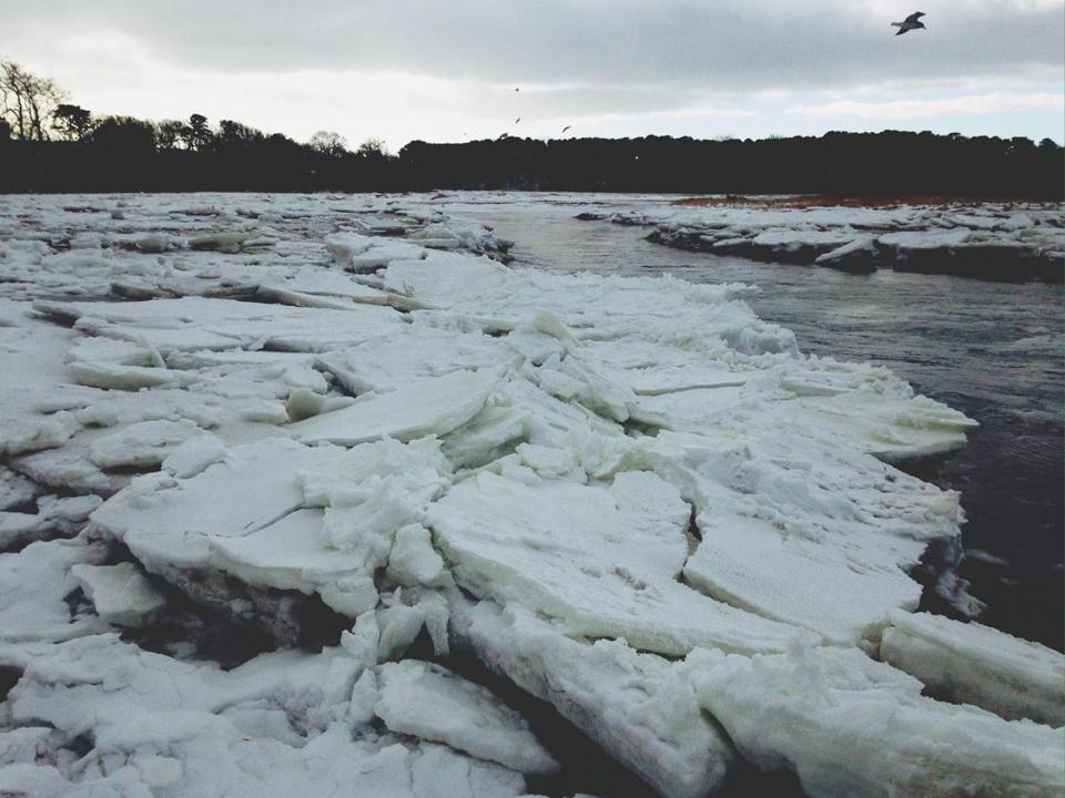03ice -- Paine's Creek beach in Brewster, MA on Jan. 1, 2018. (Claudia Geib)