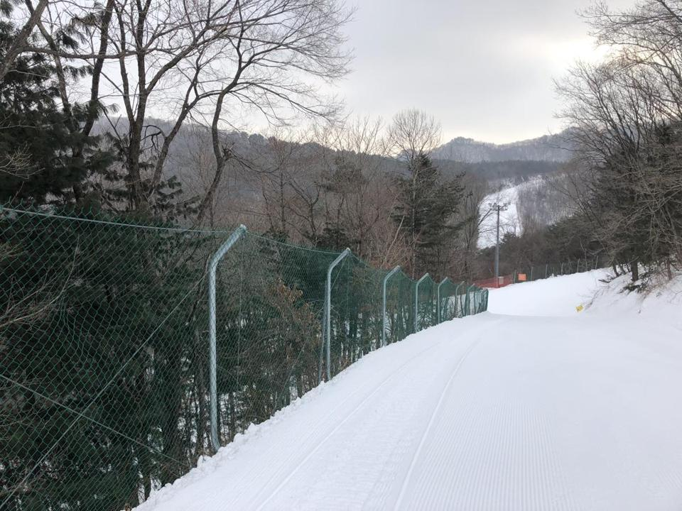 Chain-link fencing lines the slopes along the woods.