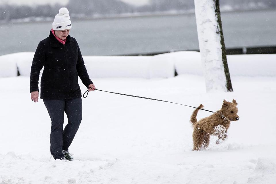 A woman walked a dog through the snow Thursday in Boston.