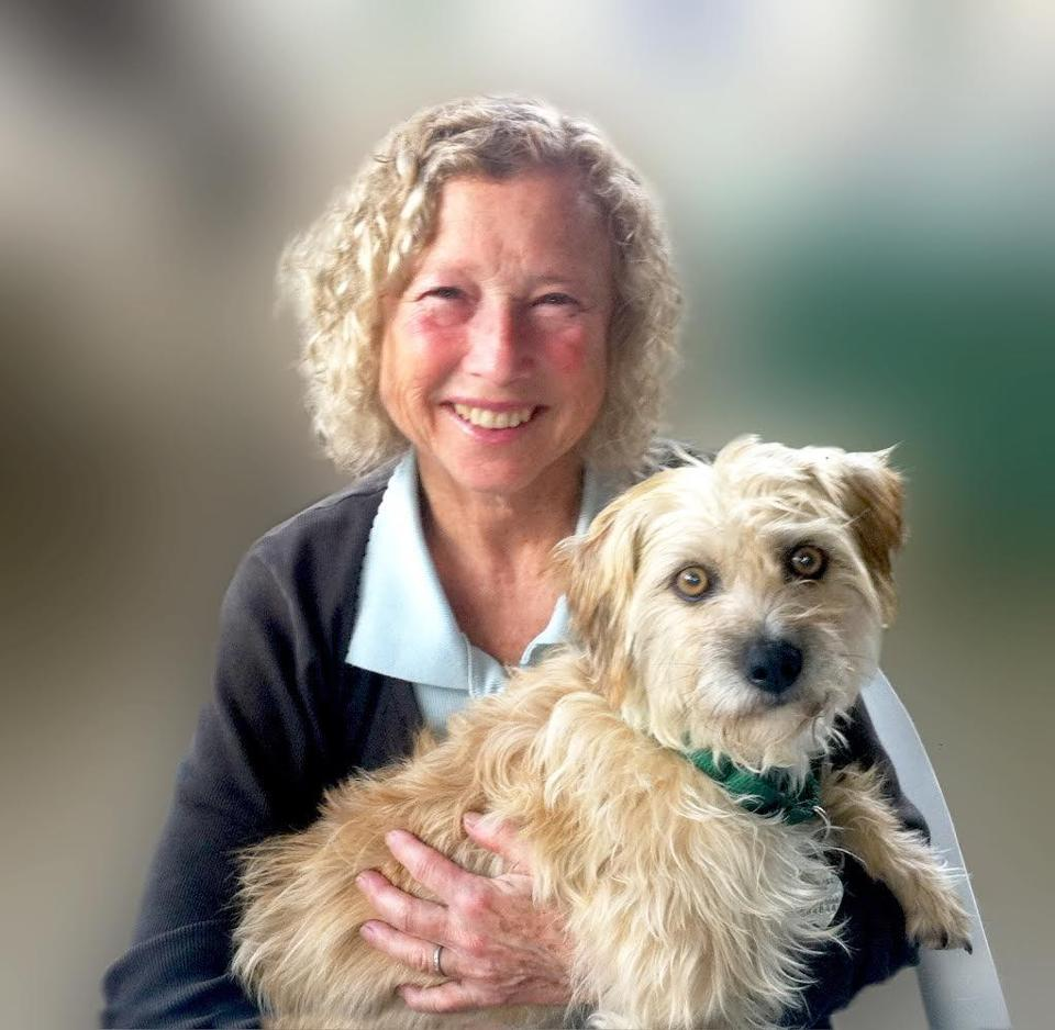 Mrs. Cohen was executive director of the Salem shelter, which has placed more than 130,000 cats and dogs.
