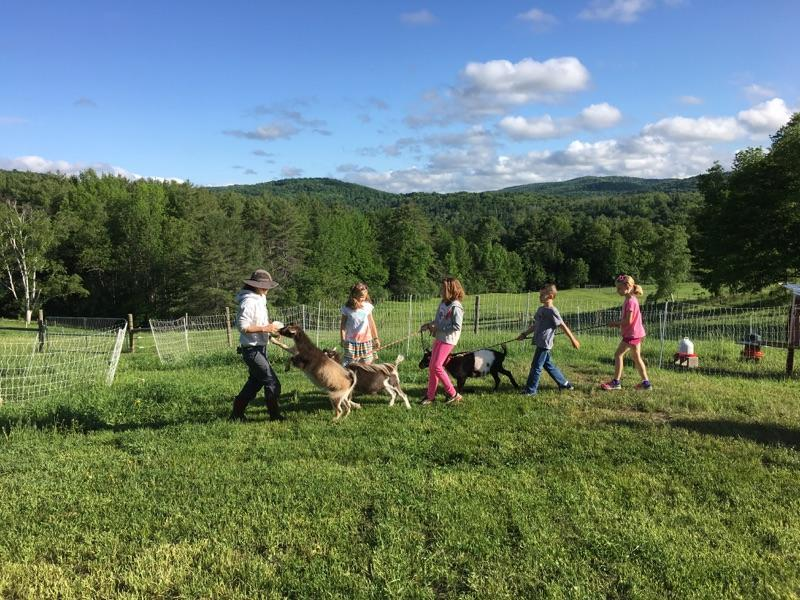 Guests walk the goats with host extraordinaire Suzy Kaplan.
