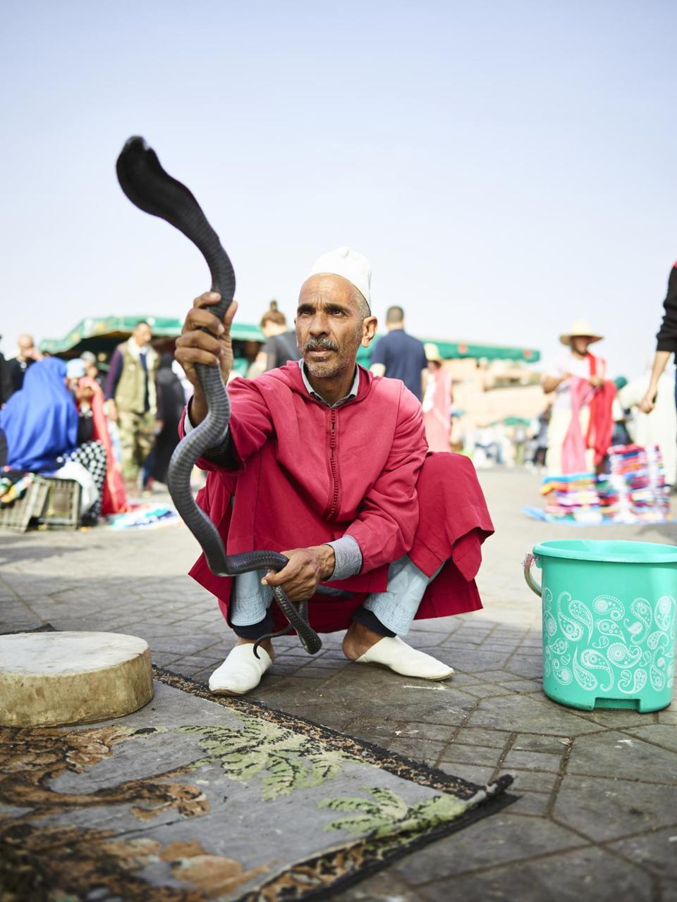 A snake charmer in Marrakech's Jemaa el Fna square.