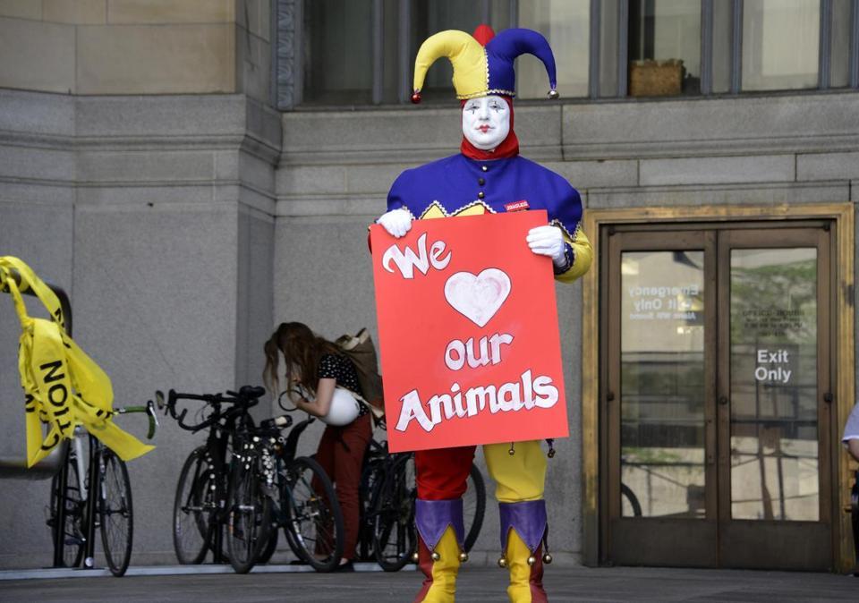 Camel runs amok at Pittsburgh circus