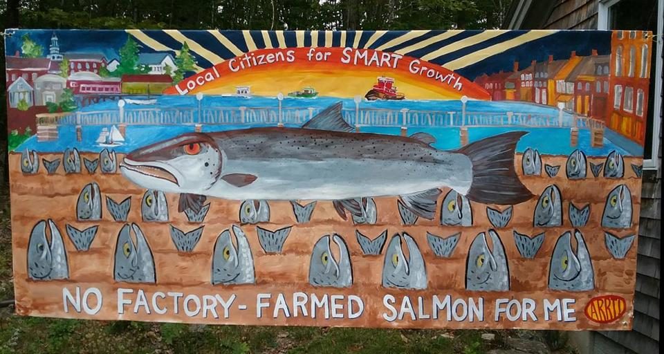 Eleanor Daniels, one if the opponents of the proposed salmon farm created this banner
