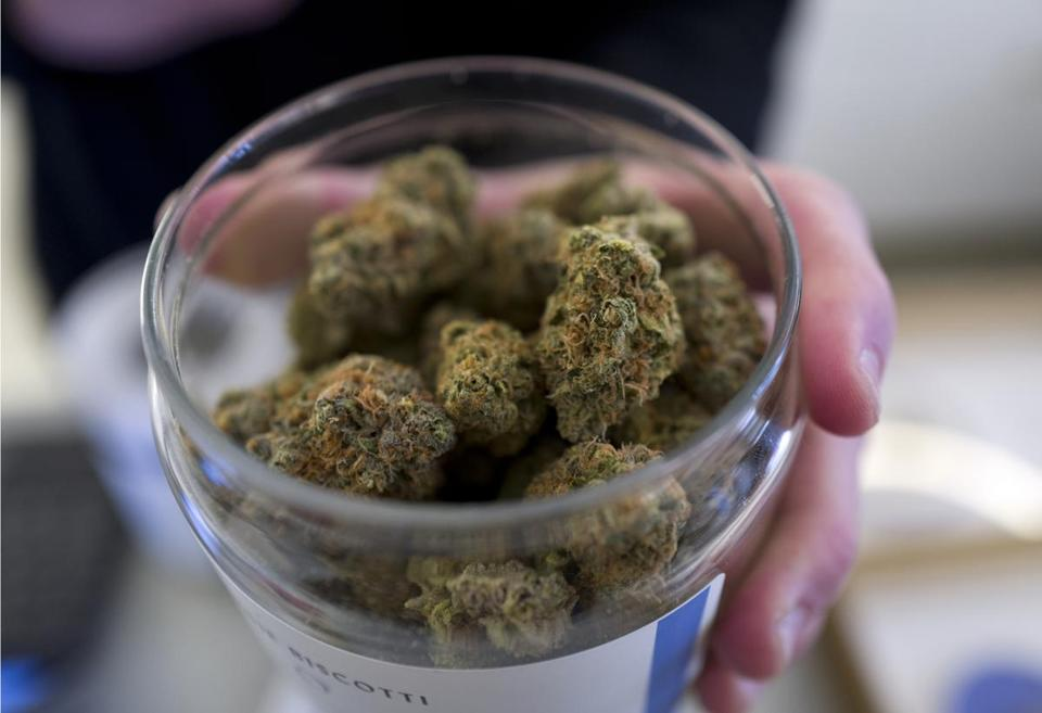In this Thursday, Feb. 7, 2019 photo a bud tender shows a top cannabis strain at Serra a dispensary in Portland, Ore. A U.S. senator from Oregon has proposed legislation that would give states a free hand to allow legal marijuana markets without the threat of federal criminal intervention. (AP Photo/Richard Vogel)