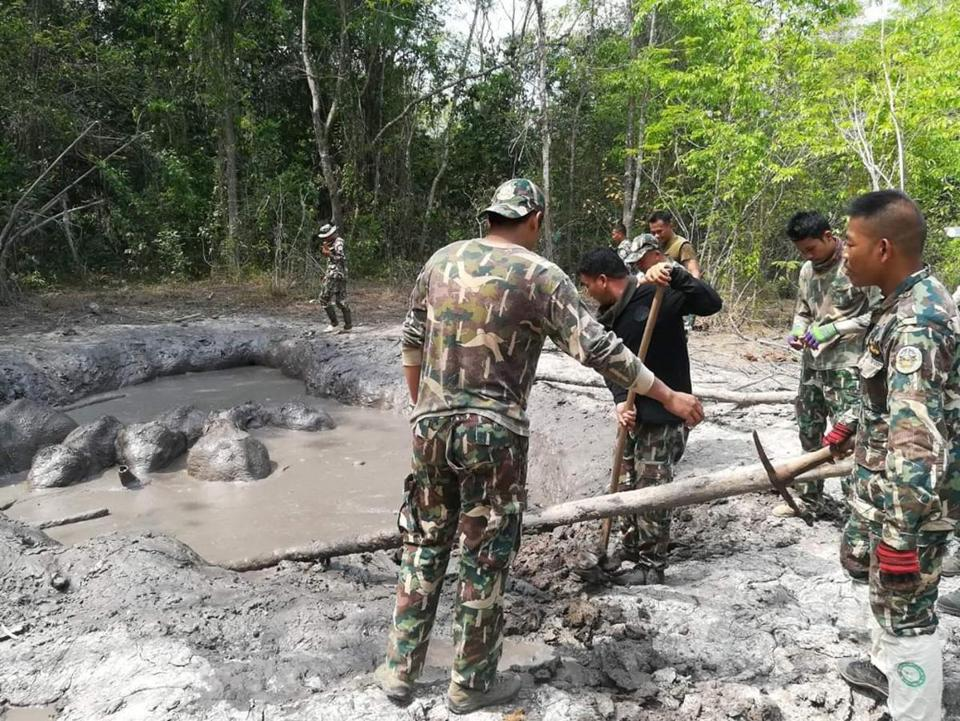Friday. 8:48 am: Rangers free 6 trapped baby elephants in Thailand