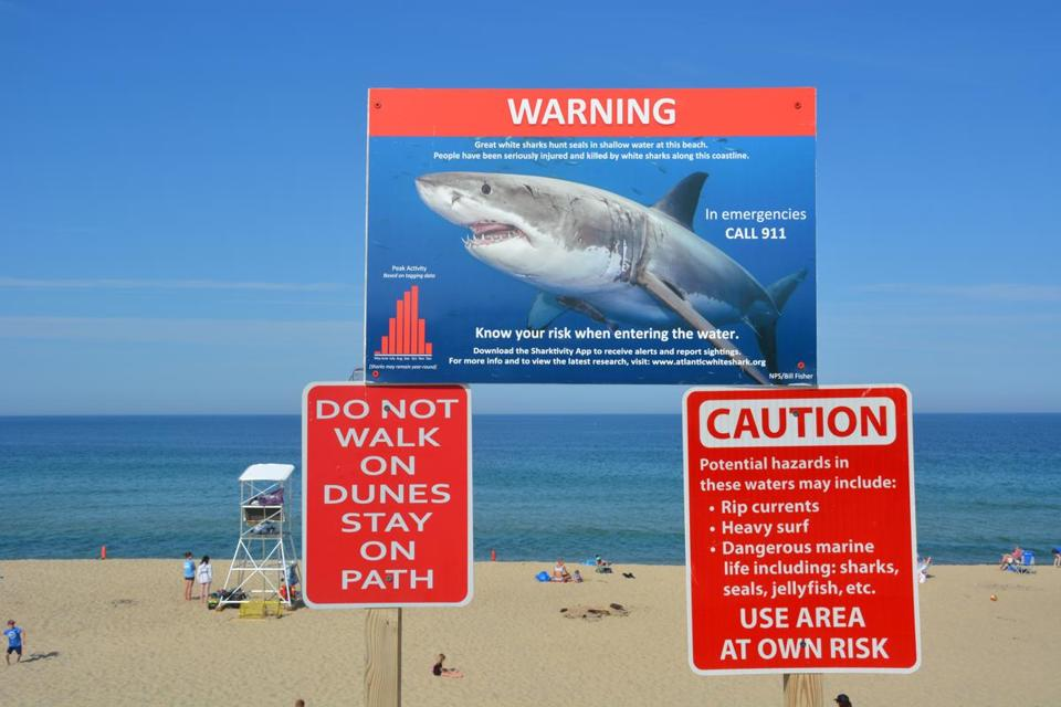 New signs at Newcomb Hollow Beach in Wellfleet, where a fatal shark attacked occurred in September, urge beach users to exercise caution when in the water.