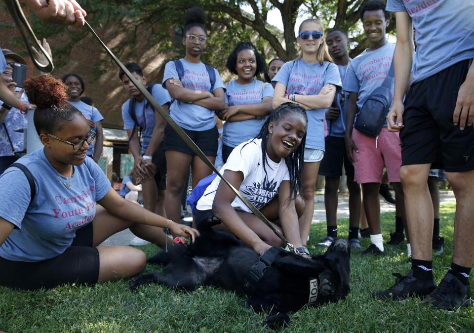 Cambridge Youth Police Academy member Kiara Rosario (center), 17, pet K-9 Tango after watching a bomb squad training demonstration. Like other cities, Cambridge has also turned to local high school students as a potential pool of recruits.