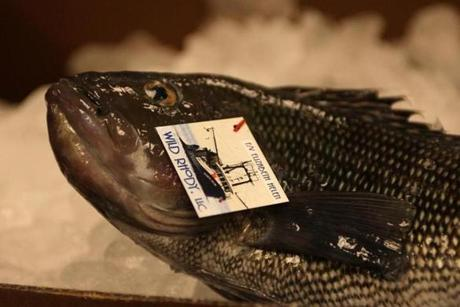 Each fish comes with a tag that includes the name of the fishing boat, in this case the Elizabeth Helen.