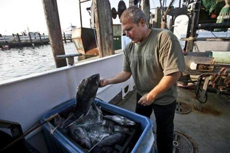 So far, seven fishermen in New England have used Trace and Trust and more than 100 restaurants have received seafood through it.