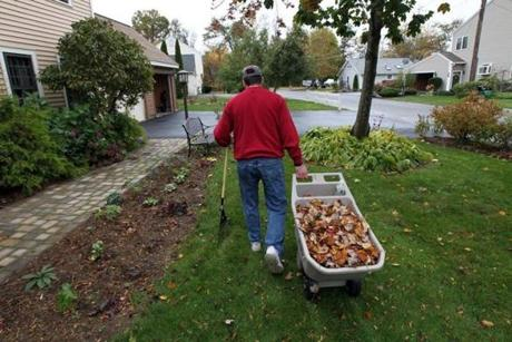 Oct. 26, 2011: Vincent rakes leaves around his home, one the many tasks his wife will leave to keep him occupied during the day.