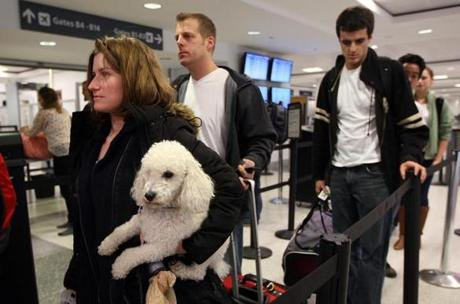 Shannon Shupak waited to go through security at Logan Airport with her poodle, Brewster, following the Thanksgiving holiday.