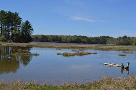 Much of Great Bay is surrounded by pristine salt marshes, mudflats, eel grass meadows, and rocky shores.