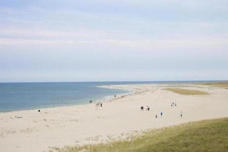 Sunbathers love Chatham Lighthouse Beach on Cape Cod, and so do seals, making this a top seal-observing spot.
