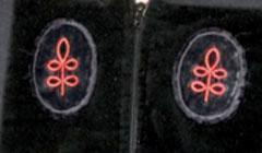 "The ""crow's feet"" emblem is worn on graduates' academic robes. This red one signifies the Divinity School."
