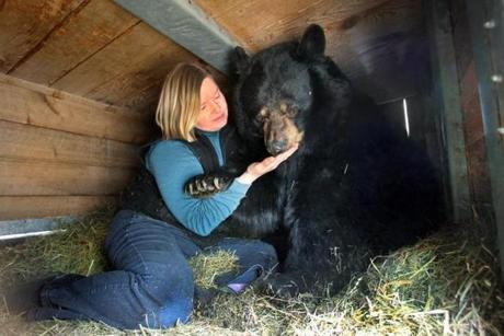 Maureen Clark at Clark's Trading Post with her beloved black bear, 22-year-old Victoria, in her den.