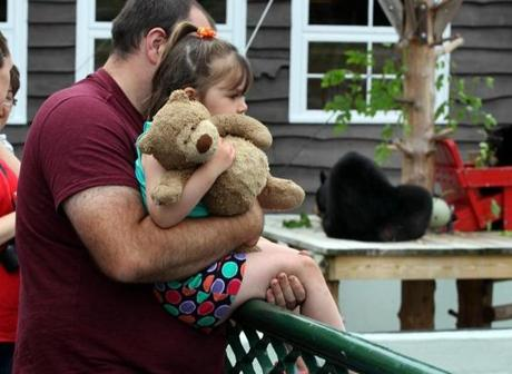 Kamdyn Wallace, 2, from Madison, Maine, is held by her dad, Jason as she looks into Victoria's pen.