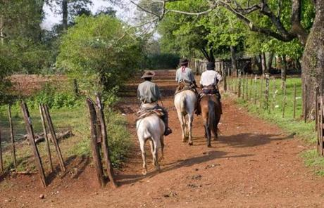 Originally home to Guarani tribes, Misiones is now the turf of gauchos, or Argentine cowboys.