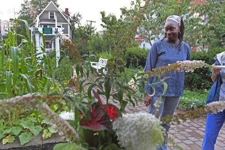 Activist Jhana Senxian worked all summer with her neighbors to revive the garden, and then planned a party to show off their work in August.