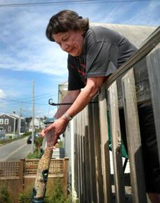 Gail Kansky said she began feeding the birds two years ago, as a way of bringing a little nature to her doorstep.