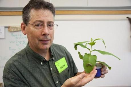 Chris Randall displayed a plant with a monarch caterpillar.