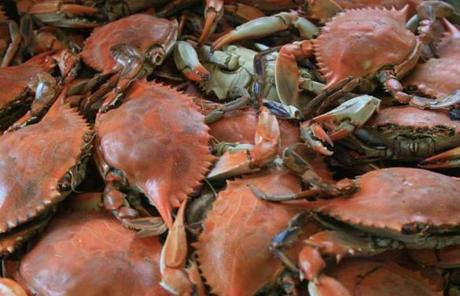 One Chesapeake Bay bounty is soft shell crabs.