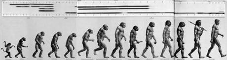 """The Road to Homo Sapiens"""