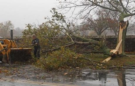A crew worked to remove a downed tree on Rockdale Street in New Bedford.