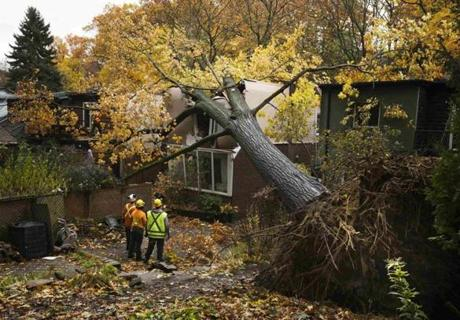 Personnel monitored a tree that fell on a house in the east end of Toronto, which was also affected by the storm's winds.