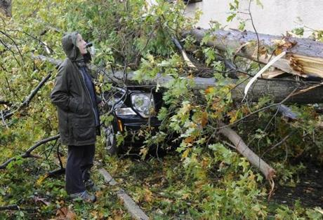 Barbara Sinenberg surveyed the damage to the car and home of a neighbor in Sea Cliff, N.Y. on Tuesday.