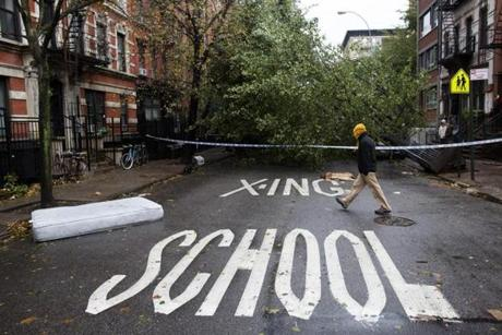 A pedestrian passed a fallen tree on East 7th Street in Manhattan's Lower East Side.