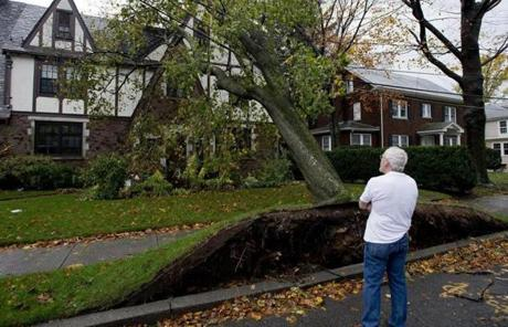 A man looked at a tree resting on powerlines in the front yard of a home in Newton.
