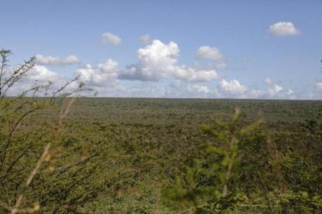 The dry scrub plains of coastal Pedernales offer a surreal contrast to the luminous beaches.