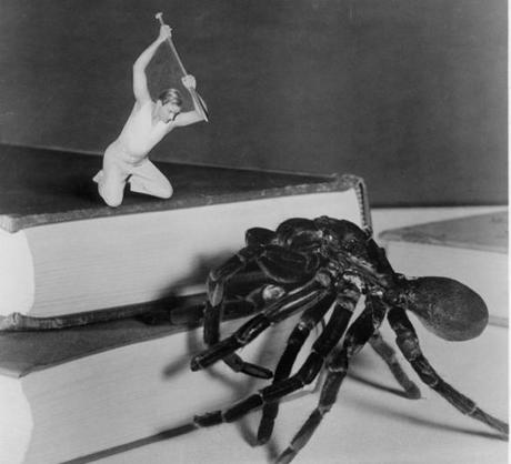 The Incredible Shrinking Man takes on a spider.
