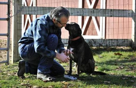 Salvia met with Flora, a rescued dog belonging to Debbie Rosse, at her Rowley farm.